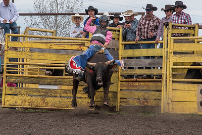 fp_benefit_bulls-6613