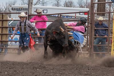 fp_benefit_bulls-6620