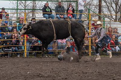 fp_benefit_bulls-6674