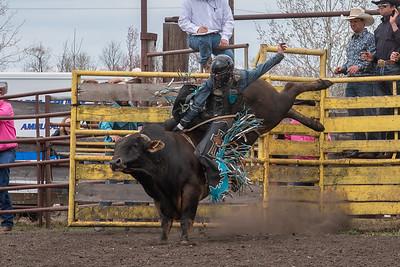 fp_benefit_bulls-6640