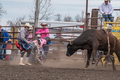 fp_benefit_bulls-6626