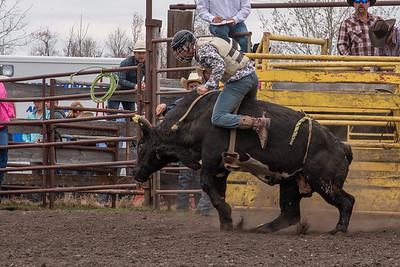 fp_benefit_bulls-6684