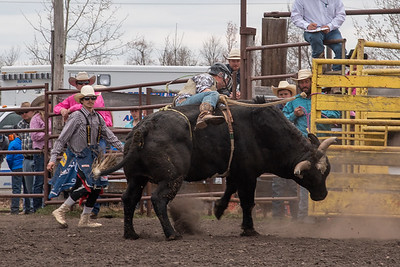 fp_benefit_bulls-6686