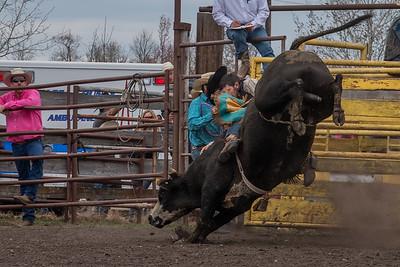 fp_benefit_bulls-6650