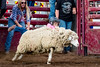 2018_May25_VCRodeo-6404
