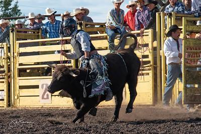 bulls_2018-1548