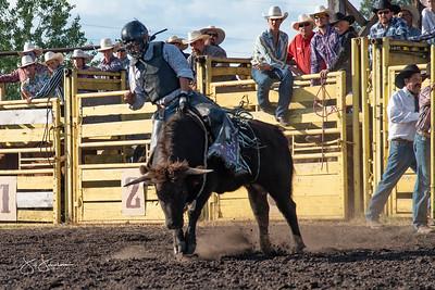 bulls_2018-1549