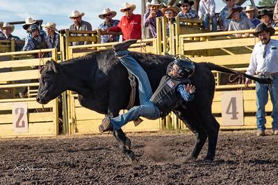 bulls_2018-1540