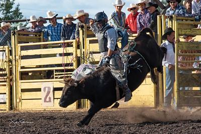 bulls_2018-1547
