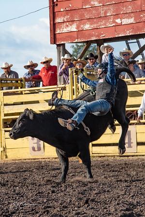 bulls_2018-1539