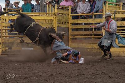 bulls_2018-2919