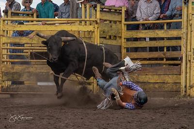 bulls_2018-2917