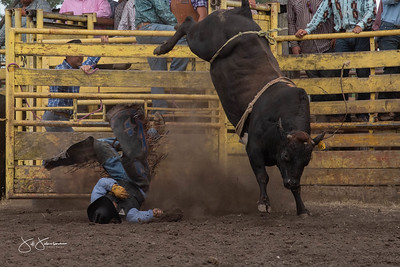 bulls_2018-2904