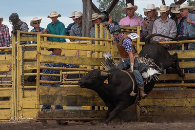 bulls_2018-2909