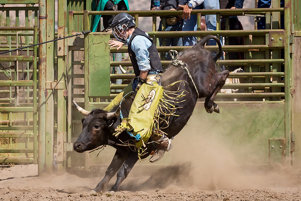 2018 PCJBR - September, Afternoon Rodeo
