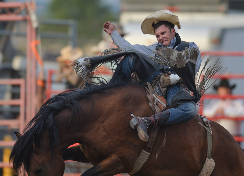 Justin Sheely | The Sheridan Press<br /> Buck Lunak of Cut Bank, Montana, competes in bareback riding in the first round of the Sheridan WYO Rodeo at the Sheridan County Fairgrounds Wednesday, July 11, 2018.