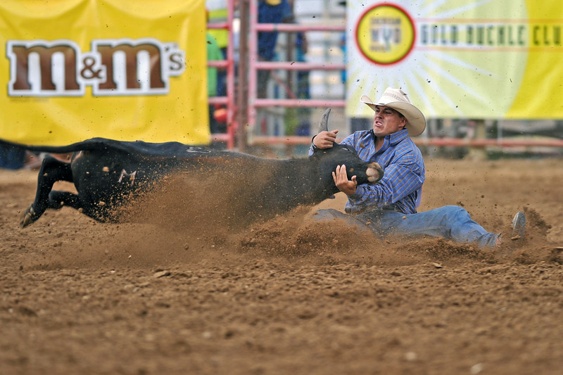 Mike Pruden | The Sheridan Press<br /> Dirk Tavenner wrestles a steer during the Sheridan WYO Rodeo at the Sheridan County Fairgrounds Wednesday, July 11, 2018.