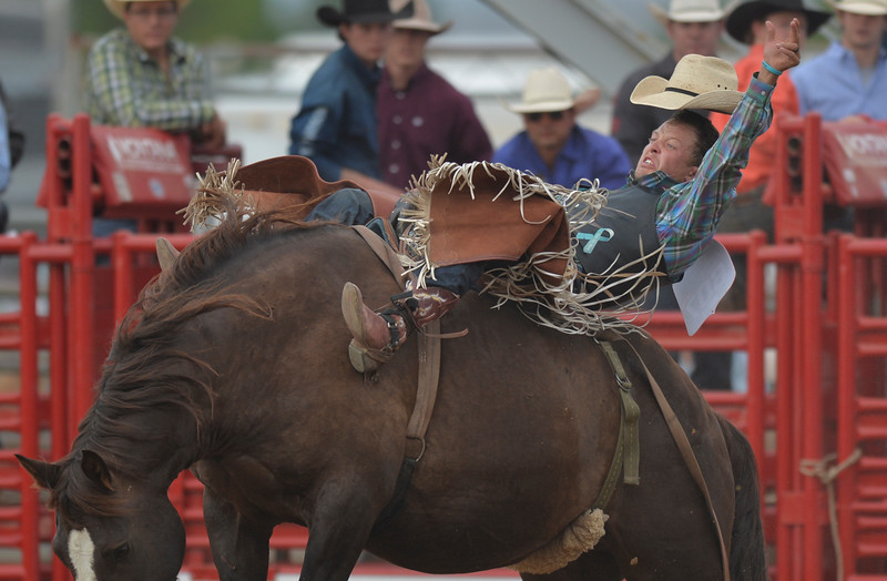 Justin Sheely | The Sheridan Press<br /> Tyler Scales of Buffalo, Wyoming, competes in bareback riding in the first round of the Sheridan WYO Rodeo at the Sheridan County Fairgrounds Wednesday, July 11, 2018.