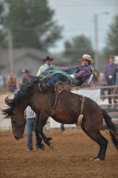 Justin Sheely | The Sheridan Press<br /> Chance Ames of Big Piney, Wyoming, competes in bareback riding in the first round of the Sheridan WYO Rodeo at the Sheridan County Fairgrounds Wednesday, July 11, 2018.