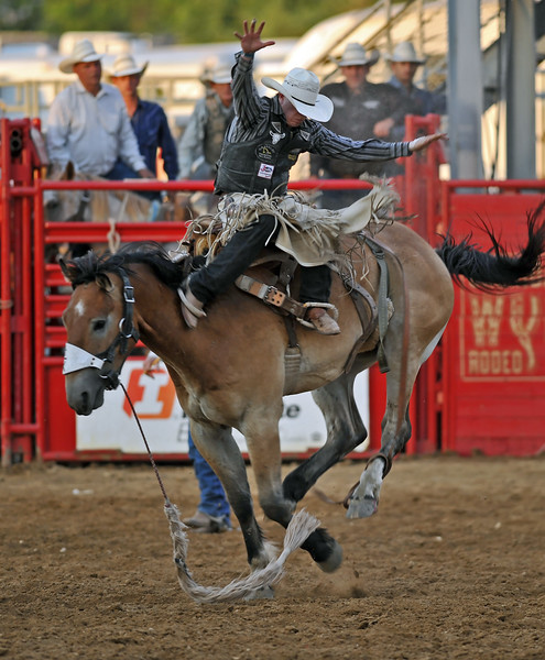 Mike Pruden | The Sheridan Press<br /> Saddle bronc rider Tyrel Larsen jumps from his bronc during the Sheridan WYO Rodeo at the Sheridan County Fairgrounds Wednesday, July 11, 2018.
