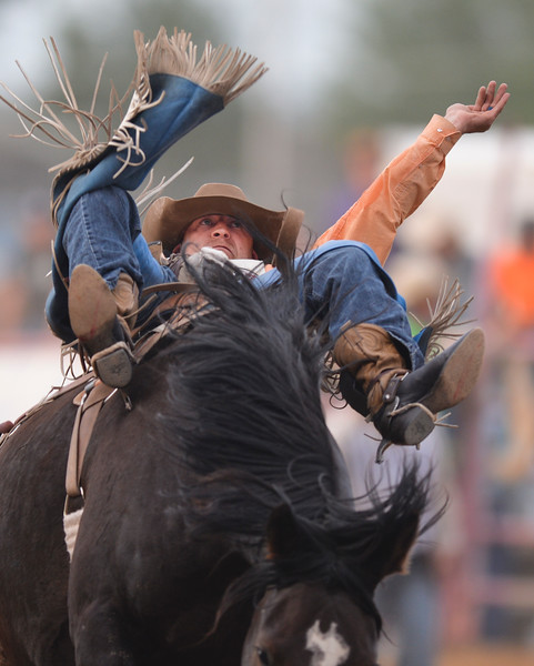 Justin Sheely | The Sheridan Press<br /> Seth Lee Hardwick of Ranchester, Wyoming, competes in bareback riding in the first round of the Sheridan WYO Rodeo at the Sheridan County Fairgrounds Wednesday, July 11, 2018.