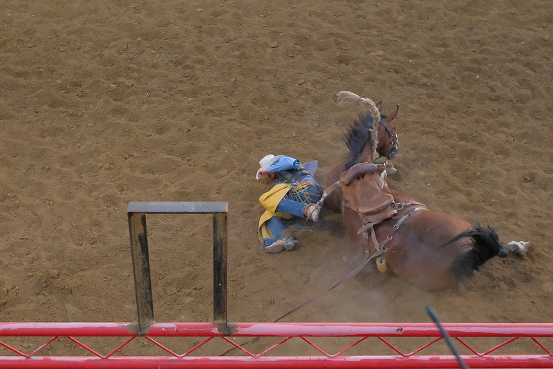 Justin Sheely | The Sheridan Press<br /> A saddle bronc rider takes a spill during the Sheridan WYO Rodeo at the Sheridan County Fairgrounds Wednesday, July 11, 2018.