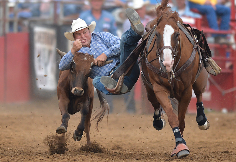 Justin Sheely | The Sheridan Press<br /> Sterling Lambert of Fallon, Nevada, competes in steer wrestling during the Sheridan WYO Rodeo at the Sheridan County Fairgrounds Wednesday, July 11, 2018.