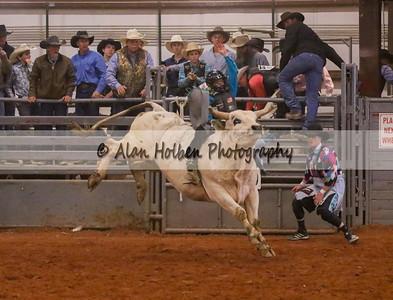 Bull Riding #31 (1 of 1)