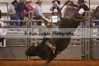Bull Riding #37 (1 of 1)