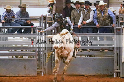 Bull Riding #51 (1 of 1)