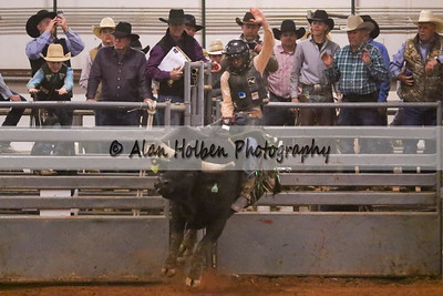 Bull Riding #36 (1 of 1)