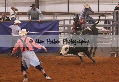 Bull Riding #32 (1 of 1)