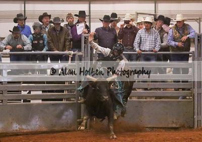 Bull Riding #45 (1 of 1)