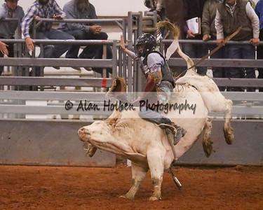 Bull Riding #52 (1 of 1)