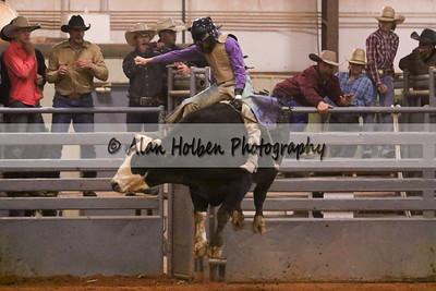 Bull Riding #44 (1 of 1)