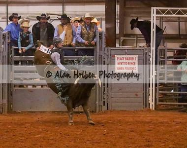 Bull Riding #29 (1 of 1)