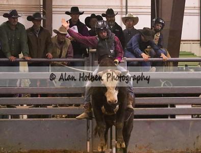 Bull Riding #39 (1 of 1)