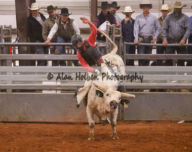 Bull Riding #34 (1 of 1)