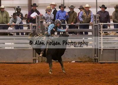 Bull Riding #47 (1 of 1)