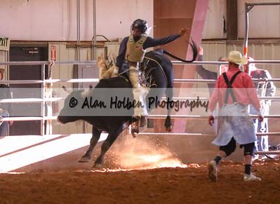 Bull Riding #41 (1 of 1)