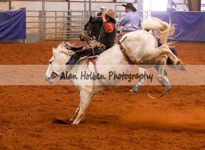 Saddle Bronc #27 (1 of 1)