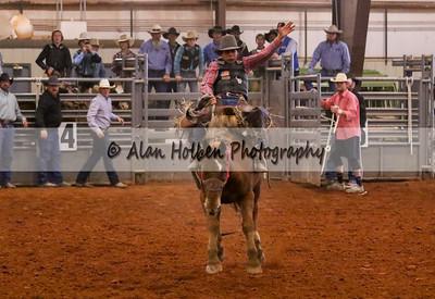 Saddle Bronc #16 (1 of 1)
