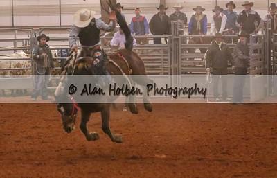 Saddle Bronc #1 (1 of 1)