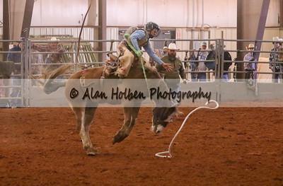 Saddle Bronc #6 (1 of 1)