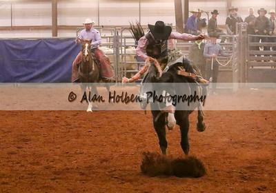 Saddle Bronc #9 (1 of 1)