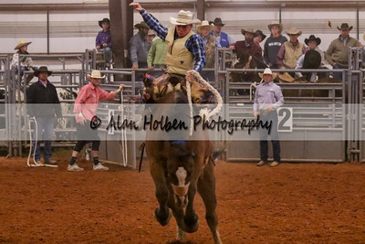 Saddle Bronc #15 (1 of 1)
