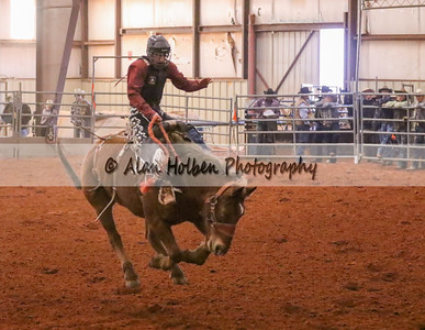 Saddle Bronc #4 (1 of 1)
