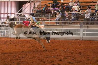 Saddle Bronc #5 (1 of 1)
