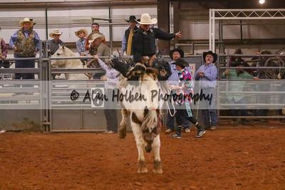 Saddle Bronc #24 (1 of 1)
