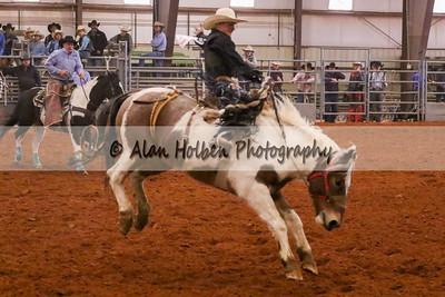 Saddle Bronc #25 (1 of 1)